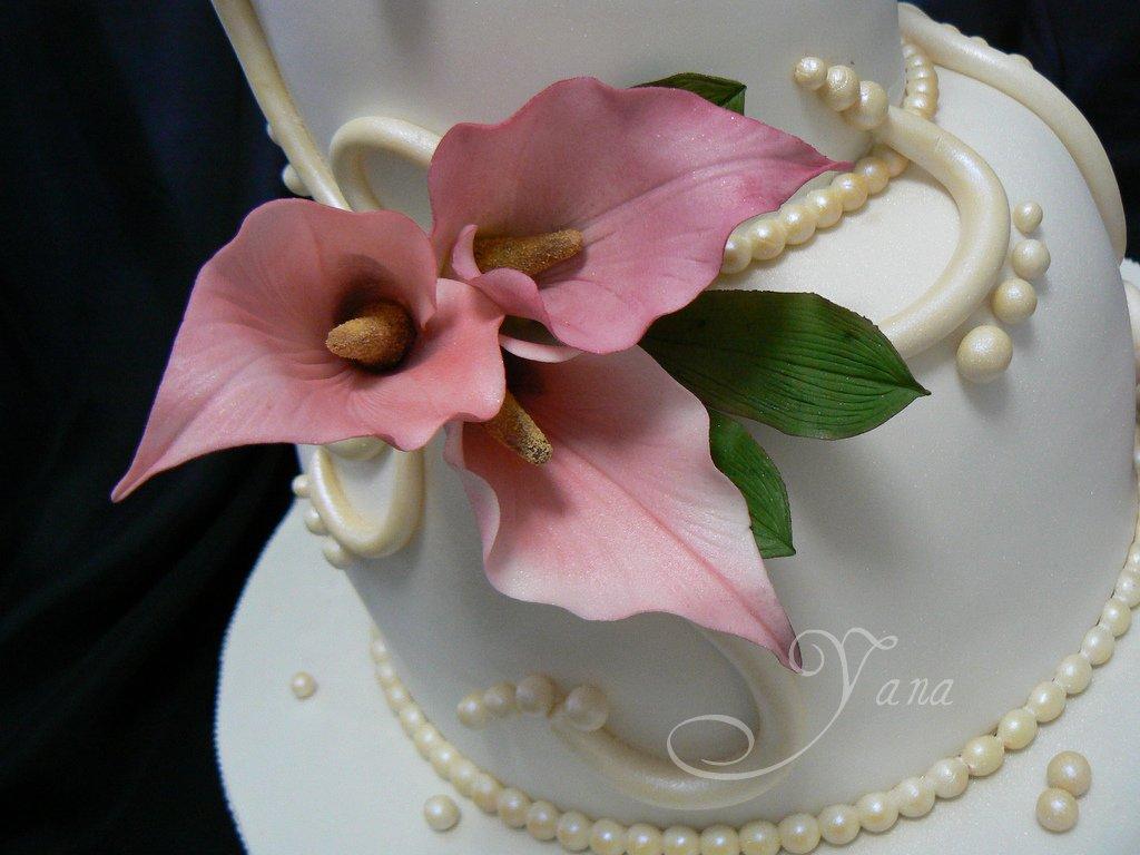 Designer cake pictures